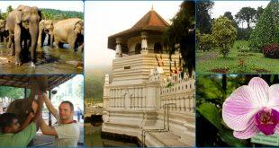 1-night-2-days-tour-to-kandy